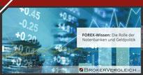 Zum Beitrag - Die Rolle der Notenbanken und Geldpolitik