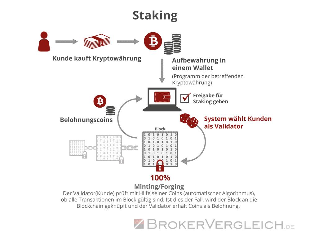 Infografik zur Funktionsweise von Coin-Staking